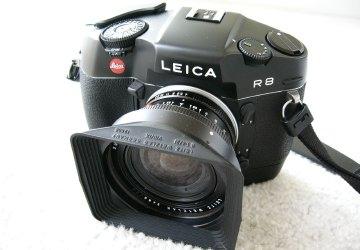 P1040366L.jpg